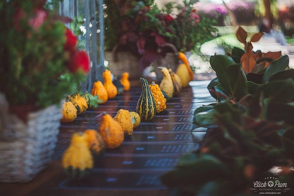 Cumpli2_Event-Wedding-Planner-Alicante_Boda-de-Nacho-y-Aurora-2015_36