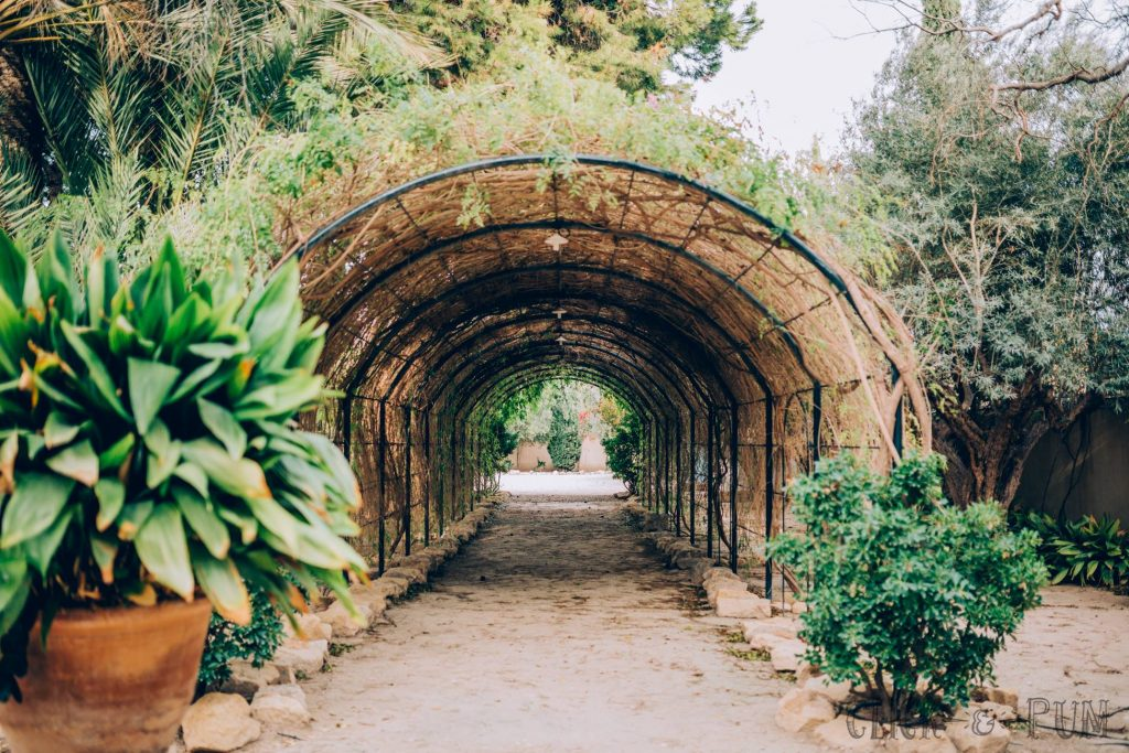 Cumpli2_Event-Wedding-Planner-Alicante_Finca-Fideguet-2016_3
